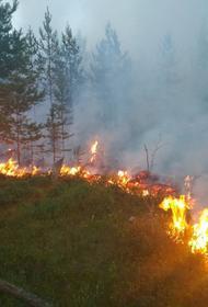 В восьми регионах России введен режим ЧС из-за пожаров