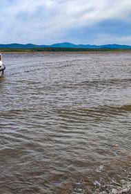 Селяне на Амуре смогут зарабатывать не только рыбалкой