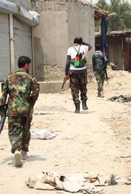 Дипломат Кабулов заявил, что Россия может разговаривать с любой из сил в Афганистане