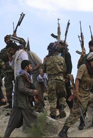 За «Талибан»* или против: что думают проживающие в России афганцы о событиях на Родине