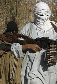Талибы расстреляли афганских спецназовцев на границе с Туркменией