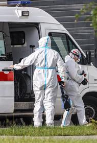 Россия обновила максимум по количеству смертей от COVID-19 за сутки