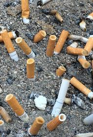 Курение наносит колоссальный вред экологии планеты