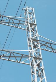 Кубанские энергетики смонтировали  на ЛЭП три тысячи птицезащитных устройств