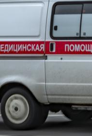 Два человека попали в больницу после жесткой посадки Ан-28 под Томском