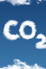 Сокращение углеродного следа поставит экспортные отрасли экономики на грань выживания