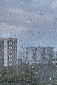 Сотрудники МЧС предупредили жителей Подмосковья о грозе в субботу