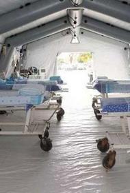 Российские военные развёртывают мобильный инфекционный госпиталь в Хакасии