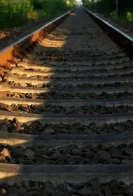 В Приамурье нашли тело пропавшего без вести мужчины после столкновения поездов