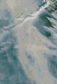 132 «контролируемых» лесных пожара действуют на территории России