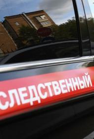 В Хабаровском крае сын убил мать, попросившую дать ей отдохнуть
