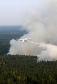 Самолеты сбрасывают воду на сибирские лесные пожары, а жители умоляют о помощи