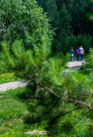 Вокруг Тургояка может появиться кольцевой велопешеходный маршрут