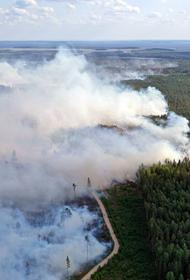 Лесные пожары на севере Хабаровского края заняли 3 тысячи гектаров