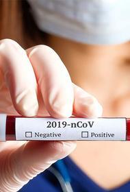 Как понимать результаты тестирования на антитела
