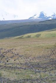 Всемирный фонд дикой природы (WWF) добился открытия границ для перехода горных баранов