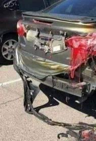 Чудовищная жара в Кувейте с расплавленными машинами на деле оказалась фейком