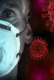 В России обнаружили 23 947 новых носителей коронавируса