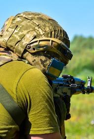 Российский депутат Елена Панина предрекла возможный крах государственности Украины в случае «третьей попытки завоевать Донбасс»