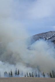 В курортных регионах Турции выявили сразу три новых пожара