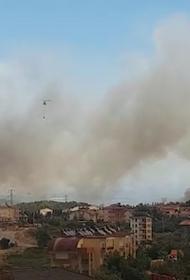Власти Турции сообщили, что лесными пожарами охвачены на юге страны семь провинций