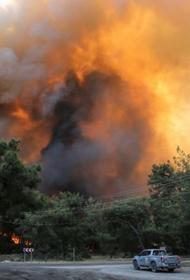 Возможно, пожары в Турции имеют рукотворное происхождение