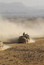 Численность российских войск и техники на маневрах в Таджикистане значительно увеличены