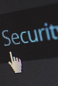В МВД сообщили о росте числа преступлений в интернете за полгода на 20,3%
