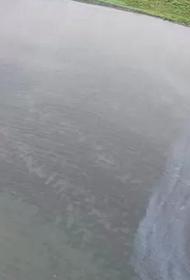 В бухте Чум в Хабаровском крае растеклось нефтяное пятно