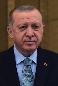 Эрдоган поблагодарил Россию и ряд других стран за помощь в тушении лесных пожаров