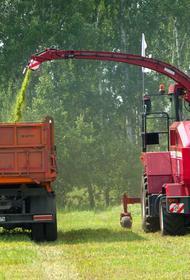 Южный Урал назван в числе регионов-лидеров по доведению субсидий аграриям