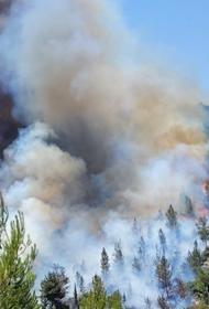 Природные пожары охватили Грецию