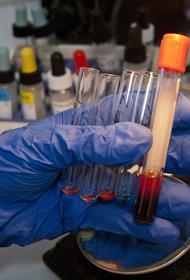 В ВОЗ заявили, что штамм коронавируса «дельта» на 50% заразнее британского варианта