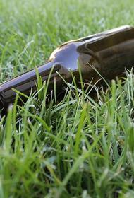 В Челябинской области пьяная водительница везла 9-месячного ребенка