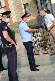 В Ставрополе задержали художника, установившего золотой унитаз перед зданием ГИБДД