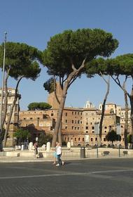 В Риме и еще семи городах Италии объявлен наивысший уровень опасности из-за жары до плюс 48 градусов