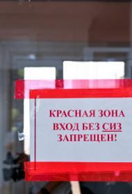 В Челябинской области за сутки от ковида скончались 25 человек