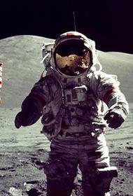 Американцы на Луну опять не полетят...