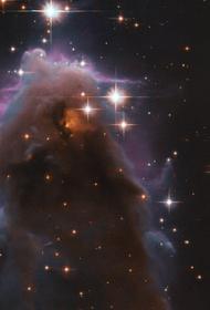 Телескоп Хаббл сфотографировал «звездные ясли»