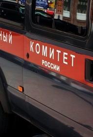 Обгоревшие тела ребёнка и женщины нашли в лесу Ленинградской области