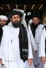 Талибан* уже иной?