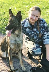 Российский пес, который спас девочку от маньяка в Питере, впервые получил итальянскую премию «Собачья верность»