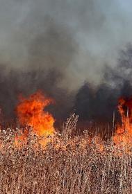 Пожар на юго-востоке Франции распространился на пять тысяч гектаров