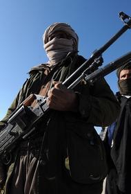 Генерал СБУ Петрулевич: если «Талибан» окажется на границах России, «могут полыхнуть» Северный Кавказ, Татарстан и Ставрополье