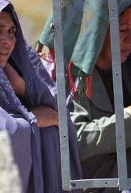 Лидеры «Талибана» намерены управлять в Афганистане по законам ислама, демократии не будет