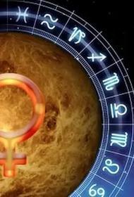 Что нам шепчет Венера: про любовь, деньги и творчество