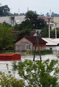 Паводки выгоднее предупреждать, уверен губернатор Приморья Олег Кожемяко