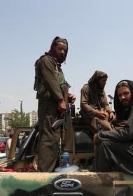Талибы заявили о необходимости принять новую конституцию в Афганистане