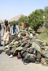 Востоковеды рассказали о будущем Афганистана при талибах
