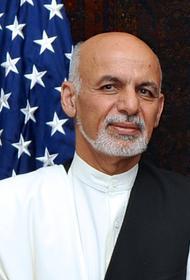 Младший брат бежавшего из Афганистана экс-президента присягнул на верность «Талибану»*